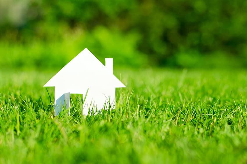 בית לבן בדשא ירוק